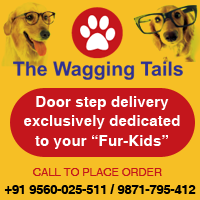 TheWaggingTails